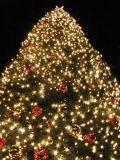 Treelighting-720181
