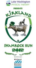Shamrockrun8-logo-160x300