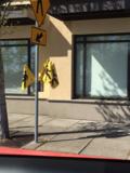Pedestrianflags
