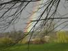 Rainbowjuanitabaypark